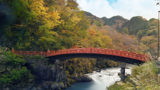 Seasonal Spots to Visit in Japan