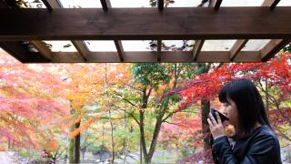 【宮城仙台】秋保溫泉賞楓景點攻略:磊磊峽、秋保大瀑布‧‧‧