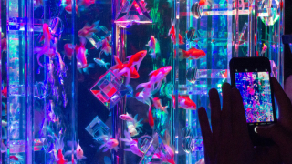 A Visit to the Futuristic Nihonbashi Art Aquarium