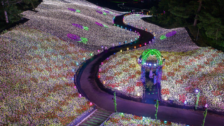 Sunflower Fields & Glittering Light Shows: APA Resort Joetsu-Myoko in Niigata Will Wow You
