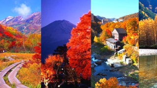 Top 10 Japanese Favourite Destinations For Autumn Leaves 2019