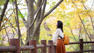 【2019日本全國紅葉特集】東北 - 來仙台秋保溫泉泡溫泉、賞楓葉