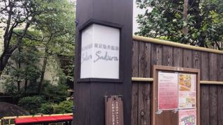 도쿄 도심에 있는 물 좋은 '사쿠라 온천'