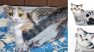 日本店家把貓界著名學說「液體喵星人」變成超級可愛的化妝包!
