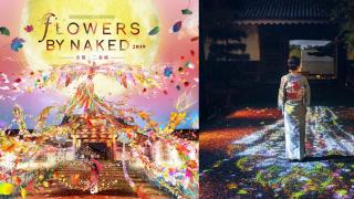 登錄世界遺產25周年記念 趕上最後幾天來「京都・二條城」看古今結合