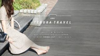 일본 ANA의 완벽히 빈 손으로 떠나는 여행?