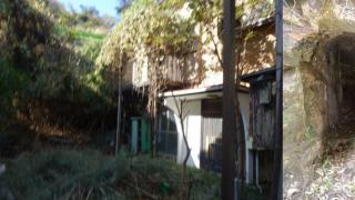 日本租屋送你屋內洞穴 屋主爆笑介紹文成推特人氣話題