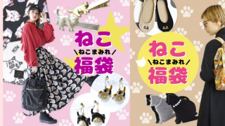 從隨身小物開始變身專業貓奴 日本貓奴2020必備福袋