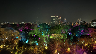 팀랩 후쿠오카 성터 빛의 축제 (チームラボ 福岡城跡 光の祭 2019-2020)