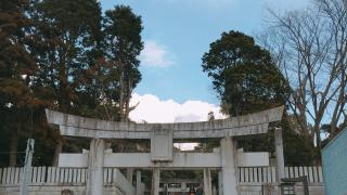 아라시 광고에 출현한 바로 그 곳! 빛의 길로 유명한 미야지다케신사(宮地嶽神社)가 있는 후쿠마(福間)!
