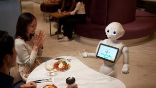 로봇이 주문받고 합석하는 일본의 이색 카페