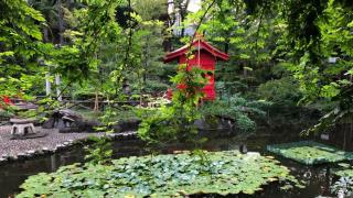 고양이 마을(야나카 긴자) 근처의 분위기 좋은 일본식 공원!