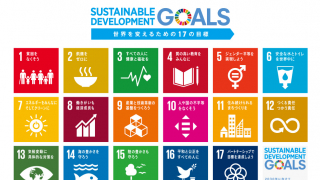 Sustainable Development Goals (SDGs) and Companies in Japan