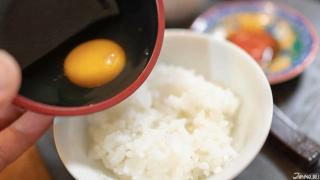 一蛋入魂・外國人的生雞蛋拌飯試吃大會