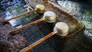 【제7탄】코로나 쇼크에 질 수 없다!일본 신사에서 전개 중인 다섯 가지 사례!