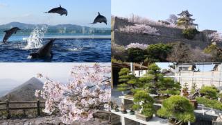 2020년 일본여행지는 여기! 카가와 현의 매력적인 관광명소