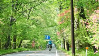 일본 코로나 바이러스 여파로 호황중인 업계 이모저모