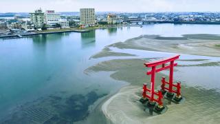 Hành trình đến Hamamatsu: thưởng hoa tulip, ngâm mình ở onsen, thả hồn vào ẩm thực trà...
