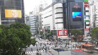 <두번째 파도> 불안하지만…일상복귀 기대 커진 도쿄