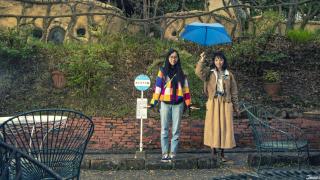 What Is Tsuyu? How to Enjoy Japan's Damp and Beautiful Rainy Season