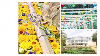 花手水和風鈴祭出場!HANA・BIYORI夏日浪漫  不只有花室星巴克