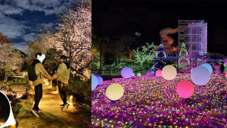 Hana-Biyori in Winter - Romantic Flowers and Nighttime Light Displays at Yomiuriland's...