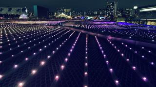 งานประดับไฟบริเวณสนามม้าใจกลางโตเกียว Tokyo Mega Illumi สนามม้า Tokyo City Keiba