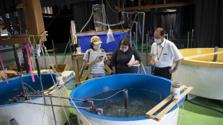 [Bạn biết gì về cá Joban mono ở Fukushima?] Tập 8 Những con người giữ cho Joban mono bền...