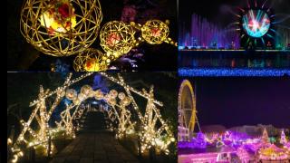 HANA・BIYORI X 讀賣樂園:東京冬季浪漫點燈之紅葉名所