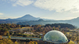 Tottori Hanakairo Flower Park | Western Japan's Largest Flower Park