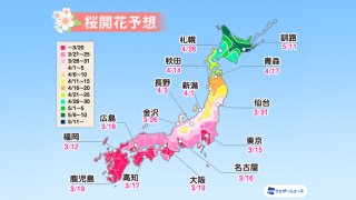 2021 Cherry Blossom Forecasts Point to a Year of Early Blooms in Japan