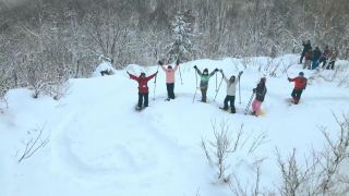 跟在日台灣人一起志賀高原玩雪滑雪去!鉑金粉雪招待的美好冬之旅