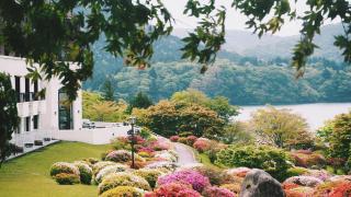 箱根小田急山之飯店杜鵑花庭園與富士山  日本關東春末賞花名所