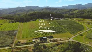 Niki Hills Winery โรงบ่มไวน์ในฮอกไกโดที่ล้อมรอบด้วยป่า ทะเล และท้องฟ้าอันกว้างใหญ่
