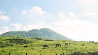 阿蘇山九州地質公園春夏篇  活火山上自駕兜風賞青草原