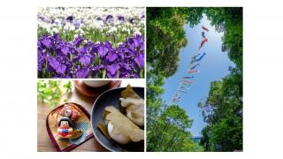 菖蒲柏餅鯉魚旗?日本過端午節5大習俗風景關鍵字
