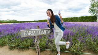 夏天北海道薰衣草花景點  富良野富田農場TOMITA FARM的紫色浪漫