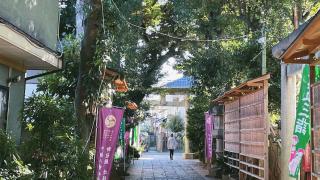 森林、貓與咖啡座 東京散步景點之品川戶越八幡神社與文庫之森